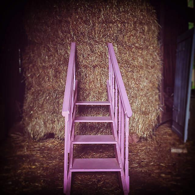 rosa treppe ( wandel einer treppe aus der sammlung sauerlach zur skulptur und zurück )